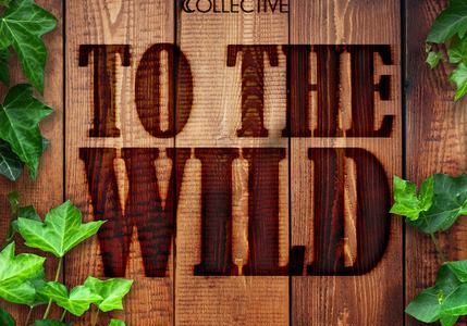 Shine on Collective To The Wild